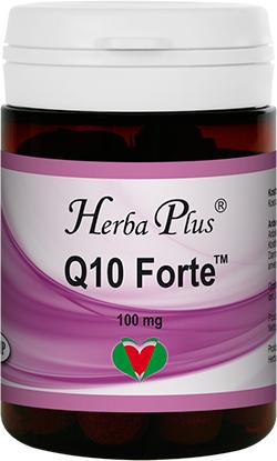 Q10 Forte (UK) Image