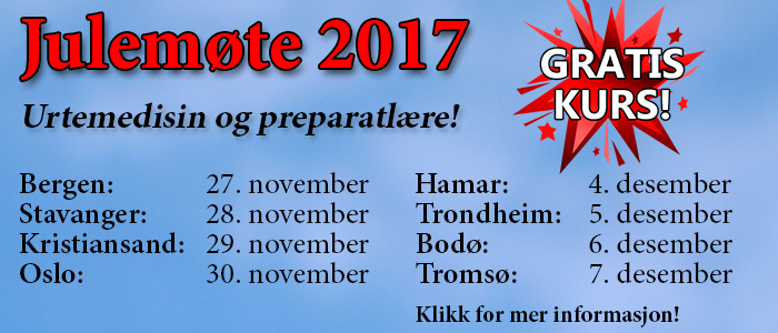 Julemote2017-slide